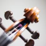 Livemusik über das Web empfangen