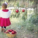 Kinderweihnachtslieder versüßen den Kleinen die Adventszeit